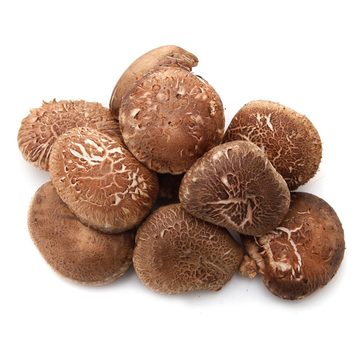청양원목표고버섯