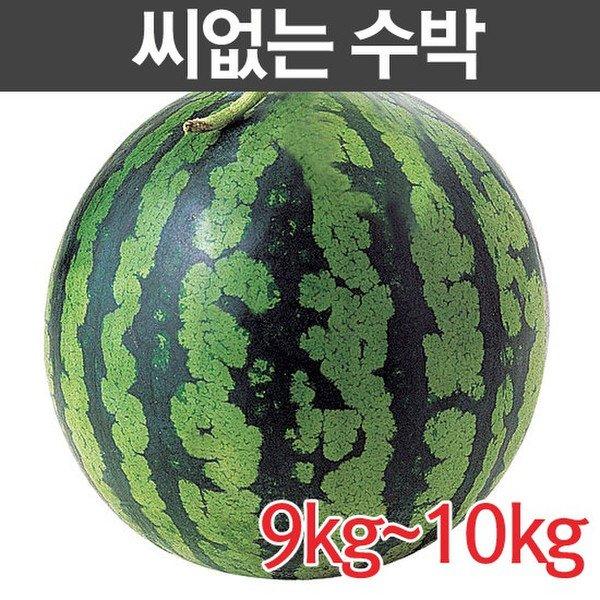 [국내산] 씨없는 수박 10kg미만